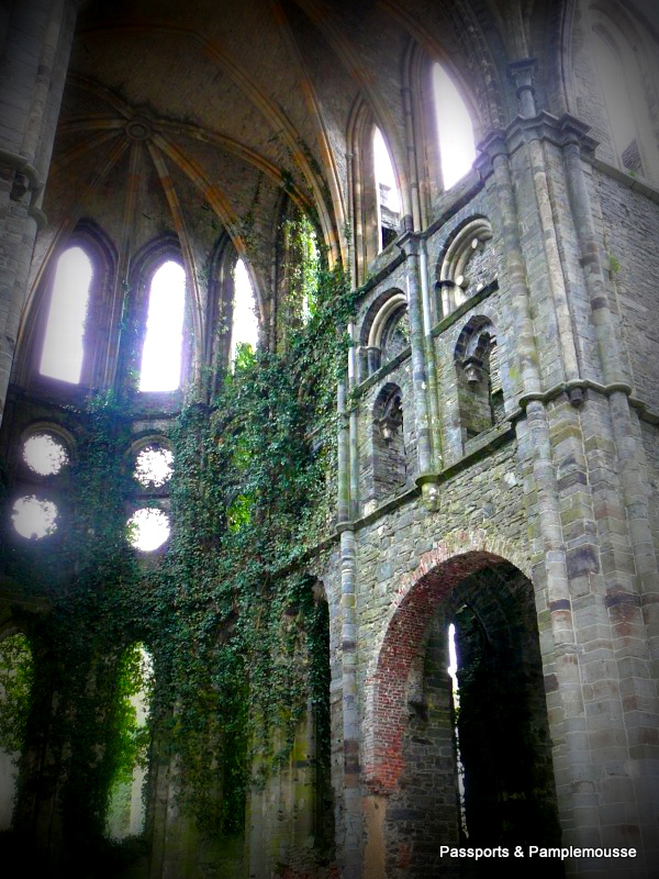 Passports and Pamplemousse at Villers Abbey